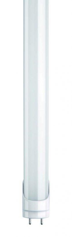 Tub LED T8